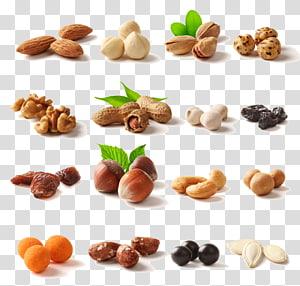 Buah kering, Nucule, Hazelnut, Kacang mete, buah kering, berbagai macam kolase kacang png