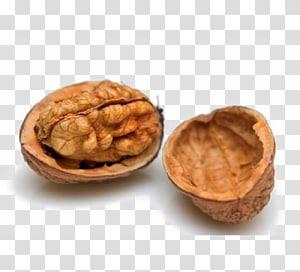 ilustrasi kacang merah, Hiveswap Nutshell, Walnut png