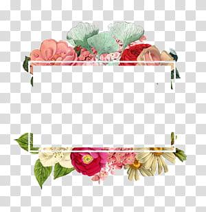 Bunga Kertas Logo, Perbatasan Bunga, ilustrasi bunga petaled berbagai macam warna png