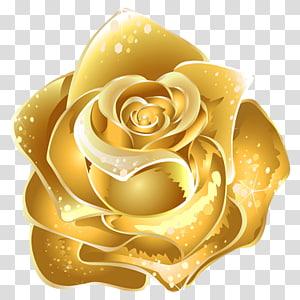 ilustrasi bunga mawar emas, Bunga Mawar Emas, Emas png