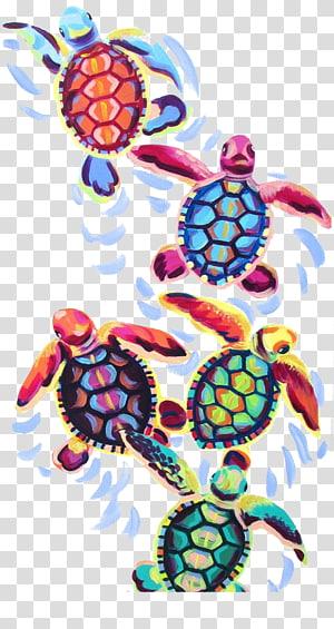 ilustrasi turtles, Turtle Art Painting Canvas Cheloniidae, Painted turtle png