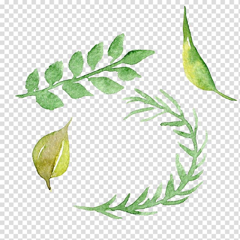 beberapa aneka daun hijau, Lukisan Cat Air Bunga Cat Air, daun cat air yang dilukis dengan Tangan PNG clipart