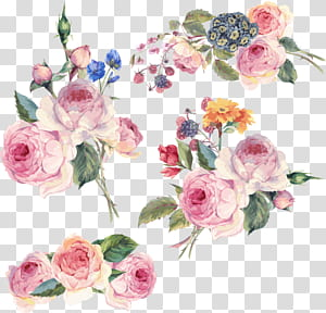 Bunga Desain bunga, Bunga yang dilukis dengan tangan, ilustrasi bunga merah muda png