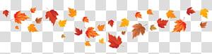 jeruk maple leaf, Autumn leaf color Autumn leaf color Red maple leaf Maple, Fall Leaves PNG clipart