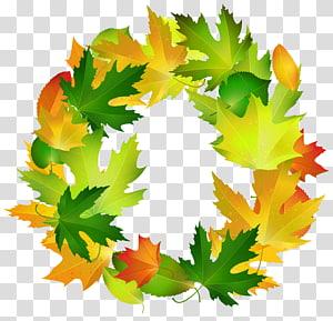 ilustrasi karangan bunga berdaun kuning dan hijau, Leaf Border Oval, Fall Leaves Oval Border Frame PNG clipart