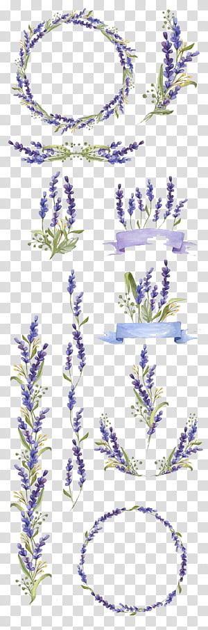 Lukisan cat air, Bunga seni lavender, Bunga yang dilukis dengan tangan, Ungu dan hijau banyak kolase dekorasi bunga png