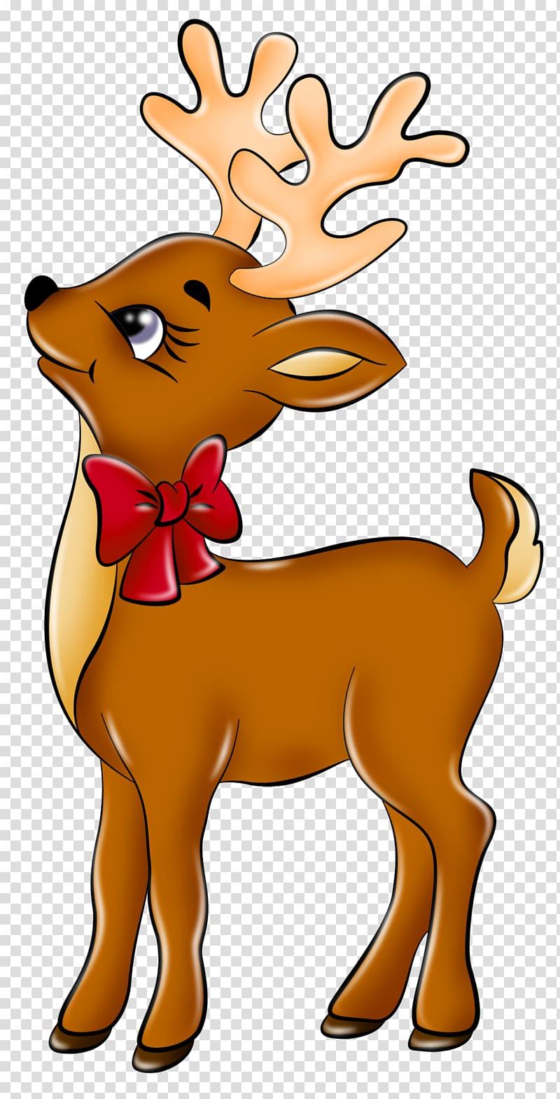 Rusa Rudolph Santa Claus, Rusa Lucu, rusa dengan pita merah png