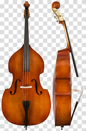 Double bass Bass guitar Instrumen String Bassist, trombone png