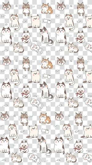 kucing, Kucing Kucing Karnivora, latar belakang Kucing png