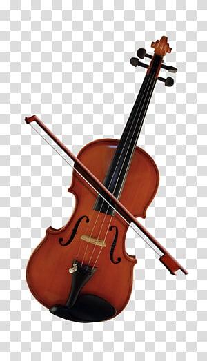 Bass biola Cello Violone Viola, Biola cantik png