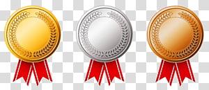Olimpiade Musim Panas 2016 Olimpiade Musim Dingin 2010 Medali emas Medali perak, Set Mawar Emas dan Tembaga, tiga ilustrasi medali png