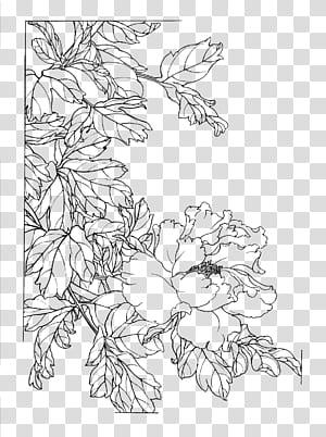 Gongbi Cina lukisan Sketsa Bunga, bunga Peony dicat gambar garis png