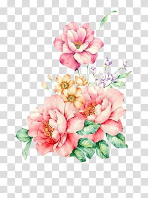 Lukisan Cat Air Bunga, Cat Air Bunga, lukisan bunga mawar merah muda png