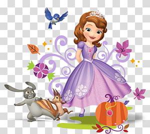 Putri Sofia, T-shirt Putri Disney, sofia png
