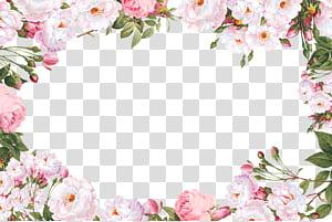 Tipe huruf Script Sans-serif Kaligrafi Font, Perbatasan Bunga, ilustrasi bingkai bunga petaled putih PNG clipart