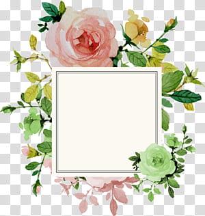 Undangan pernikahan Flower Rose, Flower Border, bingkai putih persegi dengan ilustrasi latar belakang bunga png