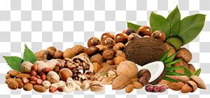 Nucule Almond, Nuts Clipar, berbagai kacang png