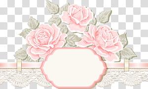 Undangan pernikahan Pernikahan, Undangan Pernikahan, bunga merah muda wallapper 3D png