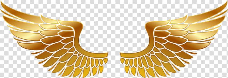 ilustrasi sayap emas, Maltese lintas Pemadam Kebakaran departemen Pemadam Kebakaran Decal Star of Life, bahan Wings png