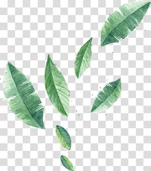 banyak daun hijau, Lukisan Cat Air Kanvas Poster, daun Mengambang png