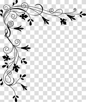 bunga putih, batas halaman PNG clipart