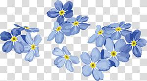 Euclidean Lukisan Bunga Biru, bunga biru yang dilukis dengan Tangan, biru dan bunga petal png