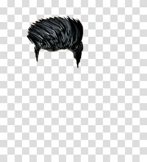rambut hitam, mengedit Hair PicsArt Studio, rambut png