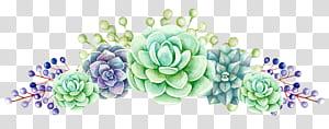 Produksi Teh Bunga di Sri Lanka Tanaman sukulen, Bunga, lukisan bunga hijau dan biru png
