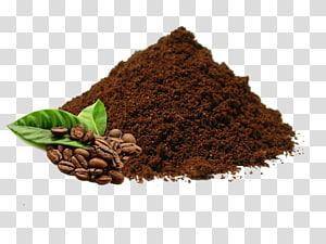 biji kopi dan daun hijau, kopi saring India kopi Arabika Kopi instan Biji kopi, bubuk png