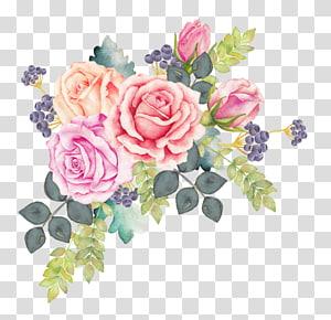 ilustrasi bunga aneka warna, Lukisan Cat Air Bunga Cat Air Mawar, karangan bunga bunga cat air png