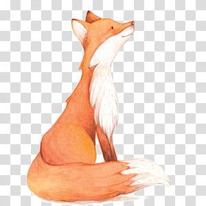 Lukisan Cat Air Fox, Fox Cat Air, ilustrasi rubah png