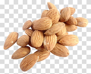 ilustrasi kacang merah, Kacang Almond, Kacang Almond png