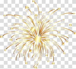 Kembang api Euclidean, kembang api emas, kembang api bintang emas png