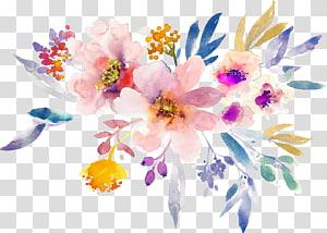 Lukisan bunga guas kreatif, bunga warna-warni png