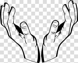 ilustrasi tangan manusia, Gambar Tangan, tangan png