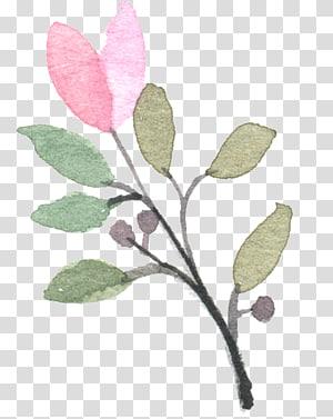 Cat Air Modern: Eksplorasi yang Menyenangkan dan Kontemporer dari Lukisan Cat Air Merah Muda, Tanaman yang dilukis dengan Tangan, ilustrasi daun merah muda dan hijau PNG clipart
