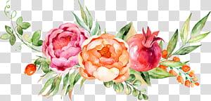 Lukisan Cat Air Bunga Anggur, dekorasi bunga Cat Air, lukisan bunga merah, pink, dan kuning png