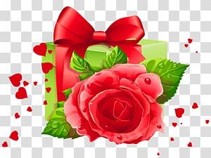 mawar merah dan kotak hadiah hijau, Hadiah Hari Valentine, Jantung dan Dekorasi Hadiah png