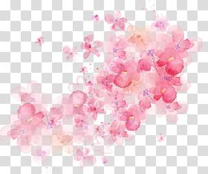 Lukisan cat air bunga, bunga cat air shading, pink petaled bunga PNG clipart