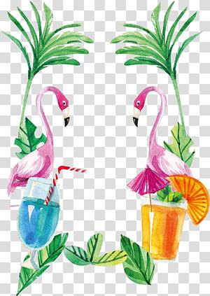 Flamingos Euclidean, Cat air, flamingo tepi, flamingo png