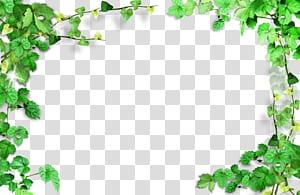 Hijau, bingkai daun Hijau, Bingkai Tanaman, tekstil hijau PNG clipart