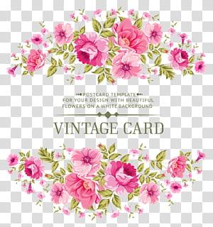 Bunga merah muda Mawar, bahan undangan bunga Simetris, Kartu pos Kartu Antik png