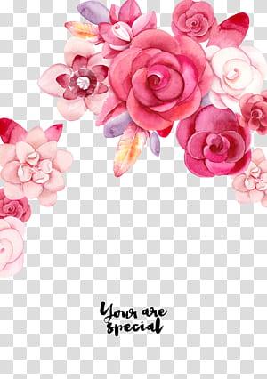 Undangan pernikahan Kaligrafi Desain grafis Handout Font, bunga, ilustrasi mawar merah muda dan putih png