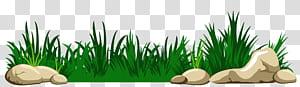 , Rumput dengan Batu, animasi rumput hijau png