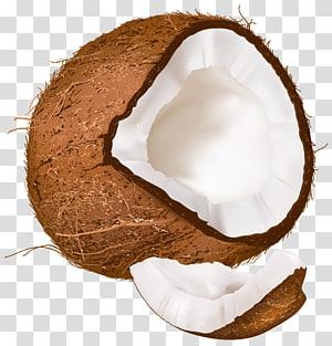 ilustrasi buah kelapa, Kelapa Terbuka PNG clipart