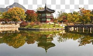 candi dikelilingi oleh pepohonan, Museum Nasional Gyeongbokgung Gwanghwamun Changdeokgung, Museum Rakyat Nasional Korea, Seoul Gyeongbokgung Palace s png