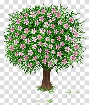 Ilustrasi Pohon, Pohon Musim Semi, bunga merah muda png