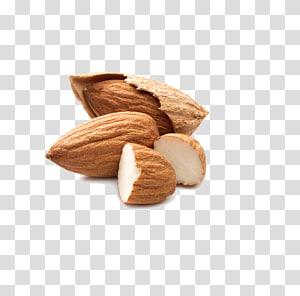 Juice Almond Nut Buah kering, almond png