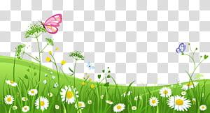 , Rumput dengan Kupu-kupu, kupu-kupu merah muda pada ilustrasi rumput hijau png