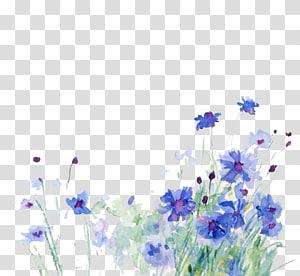 lukisan bunga ungu, lukisan cat air Cornflower Ilustrasi, Bunga biru png